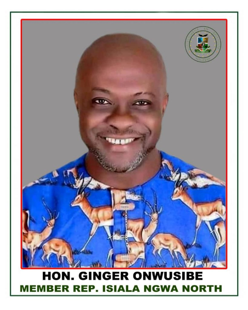 Honorable Ginger Onwusibe