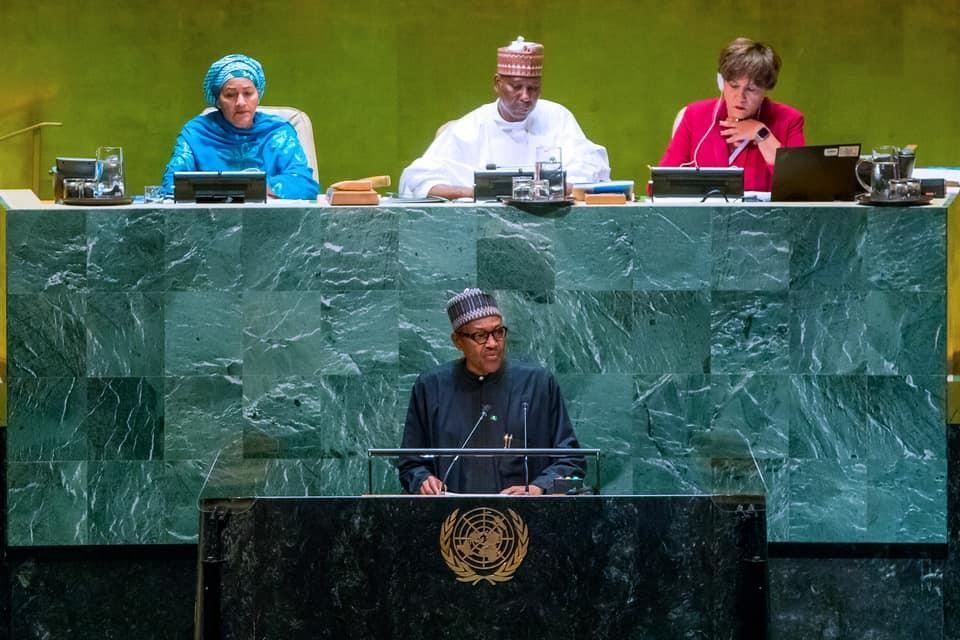 Buhari UNGA speech: EkoExcel, education,