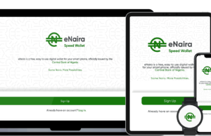 eNaira, CBn, Nigeria, Court, Company, sues, suit, launch, digital currency,